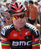 Cadel Evans Stock Images