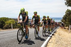 Cadel Evans Great Ocean Road Race - Auslese-Männer lizenzfreie stockfotografie