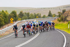 Cadel Evans Great Ocean Road Race Royalty Free Stock Images