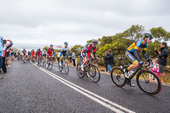 Cadel Evans Great Ocean Road Race Royalty Free Stock Photography