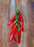 Cadena de Chillis rojo Imágenes de archivo libres de regalías