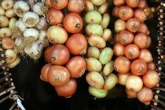 Cadena de la cebolla y del ajo Imagen de archivo