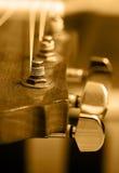 Cadena de la guitarra Imagenes de archivo