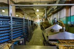 Cadena de producción automatizada de la panadería moderna Los hornos, la línea máquina del transportador y el otro eqipment para  fotos de archivo