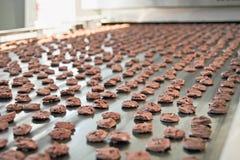 Cadena de producción de las galletas de la hornada fotografía de archivo