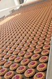 Cadena de producción de las galletas del atasco imagenes de archivo