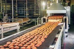 Cadena de producción de las galletas de la hornada Galletas en la banda transportadora en la fábrica de la confitería, industria  fotografía de archivo