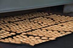Cadena de producción de las galletas de la hornada en fábrica, industria alimentaria foto de archivo