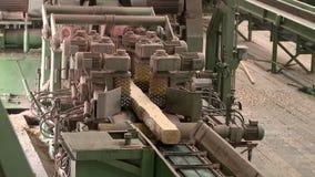 Cadena de producción para aserrar de registros en la madera de construcción almacen de video