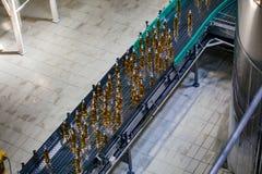 Cadena de producci?n embotelladoa automatizada moderna de la cerveza Botellas de cerveza que mueven encendido el transportador imágenes de archivo libres de regalías