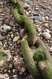 Cadena grande en la playa Imagenes de archivo