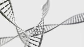 Cadenas de la DNA en el fondo ligero Fotos de archivo libres de regalías