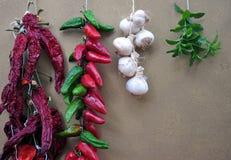 Cadenas de pimientas, chiles, ajo Fotos de archivo libres de regalías