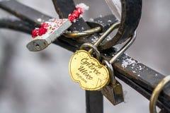 Cadenas sur le pont de tous les amants Photographie stock