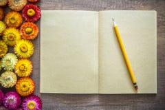 Caderno aberto do papel de embalagem de página vazia na tabela de madeira com lápis Foto de Stock Royalty Free