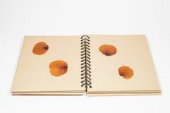 Caderno do vintage Imagem de Stock