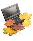Caderno e folhas de outono Foto de Stock Royalty Free