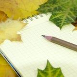 Caderno e lápis nas folhas de bordo Fotos de Stock Royalty Free