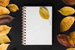 caderno espiral no fundo preto com folhas de outono, o espiral Imagem de Stock Royalty Free