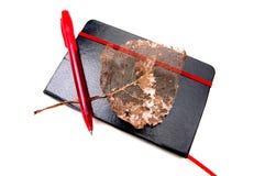 Caderno, folha do outono e ballpoint de couro imagens de stock