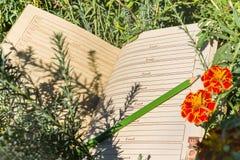 Caderno vazio na grama verde e no lápis Imagens de Stock Royalty Free