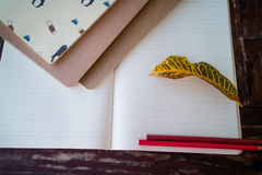 Cadernos vazios fotografia de stock royalty free
