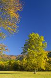 Cades-Bucht Ende Oktober Stockfoto