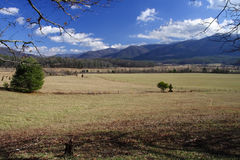 Cades Cove. Scenic and historic Cades Cove in the Great Smokey Mountains Stock Photos