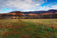 Cades Cove Autumn colors Stock Photos