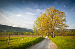 Cades Cove Dirt Road Hyatt Lane Smoky Mountains Royalty Free Stock Photography