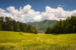 Cades Cove Great Smoky Mountains National Park Spring Scenic Landscape royalty free stock photos