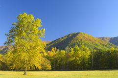 Cades Cove in Late October Royalty Free Stock Photo