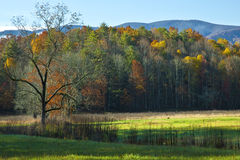 Cades Cove pasture Stock Photography