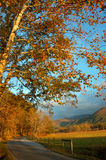 Cades Cove Road. Cades Cove Road, in the Fall. Located in The Great Smoky Mountains, Tennessee, USA stock photo