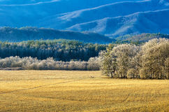 Cades Cove, winter, Great Smoky Mountains Stock Photos
