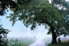 Cades zatoczki mgła nad iskra pasem ruchu Obrazy Royalty Free