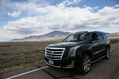 Cadillac ESCALADE in the wild Royalty Free Stock Images