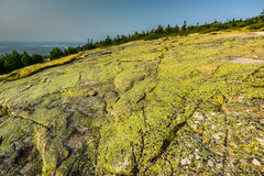 Cadillac Mountain - Acadia National Park Stock Image