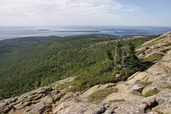 Cadillac Mountain Vista Royalty Free Stock Photos