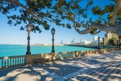 Cadiz Port. Viewed from parque de la ciudad de Cádiz Royalty Free Stock Images