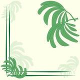 Cadre à la mode élégant de maquette de label avec des feuilles de modèle de nature de vert de paume sur un fond beige pâle avec l illustration de vecteur