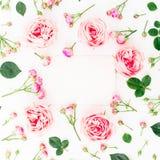 Cadre élégant avec la carte de papier des roses, des bourgeons et des pétales roses sur le fond blanc Configuration plate, vue su Photos stock