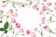 Cadre élégant fait de roses, bourgeons et feuilles roses sur le fond blanc Configuration florale Configuration plate, vue supérie Photos stock