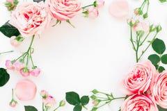 Cadre élégant fait de roses, bourgeons et pétales roses sur le fond blanc Configuration florale Configuration plate, vue supérieu Images stock