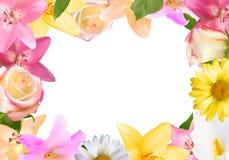 Cadre abstrait avec le lis, la Rose et d'autres fleurs Backgr naturel Images stock