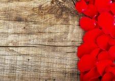 Cadre abstrait de vacances avec des pétales de rose Photographie stock