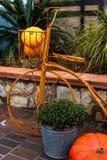 Cadre antique de bicyclette avec le panier et potirons/cadre décoratif de bicyclette avec les potirons et la plante mise en pot Photo stock