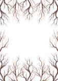 Cadre avec les branches et l'endroit d'arbre d'aquarelle pour le texte Photos stock