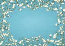 Cadre blanc de souffle du ` s de bébé Image stock