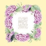 Cadre carré avec de belles fleurs et plantes de ressort Photo libre de droits